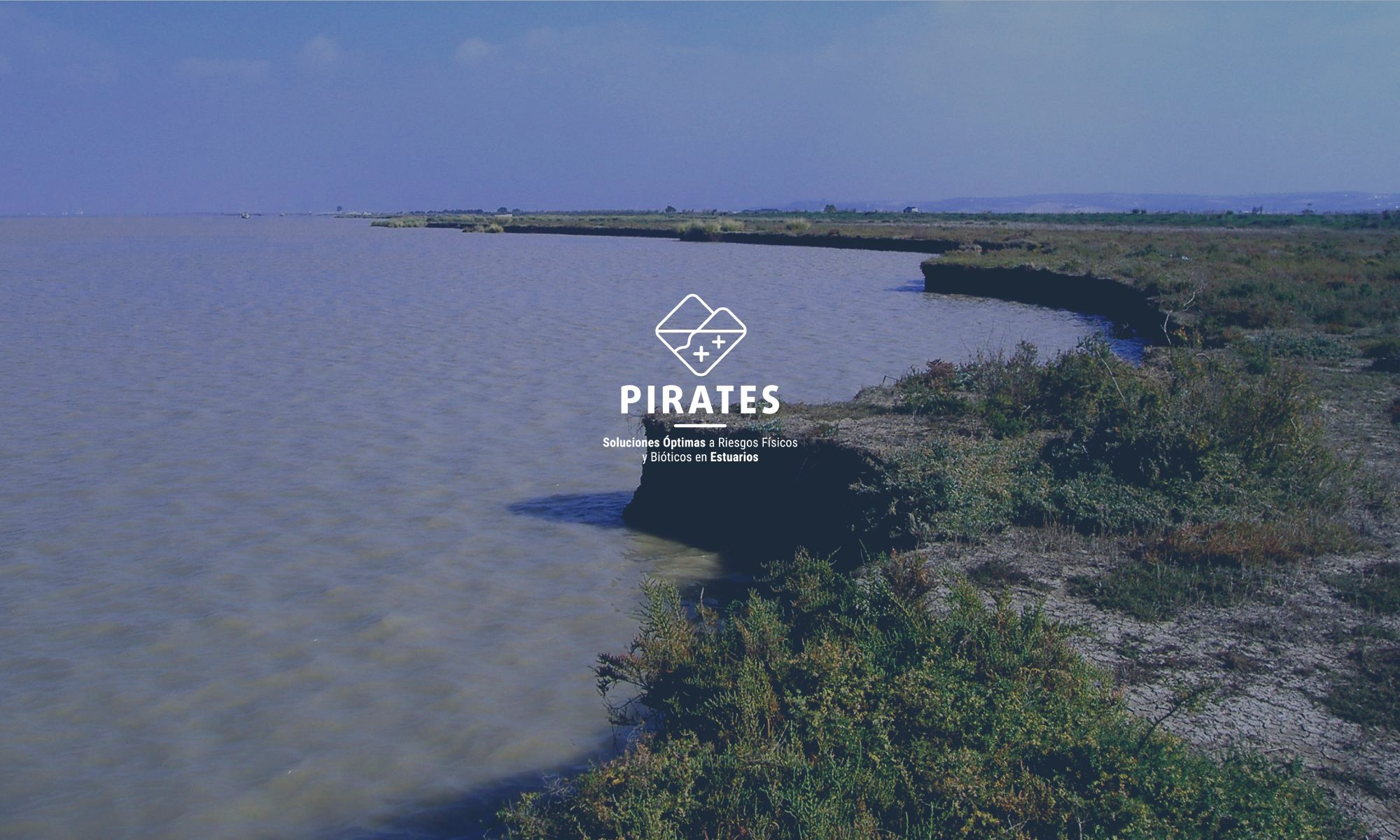 PIRATES - Multi-criteria analysis for Physical and bIotic Risk Assessment in EStuaries